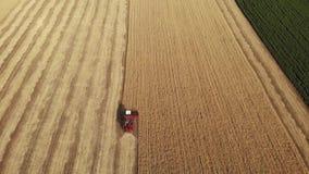 VogelperspektiveMähdrescher erfasst die Weizenernte Weizen, der Scheren erntet Mähdrescher in der FeldLebensmittelindustrie stock video footage