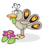 Vogelpfau lizenzfreie abbildung