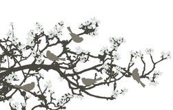 Vogels - 2d vector Royalty-vrije Stock Afbeelding