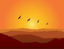 Vogels bij Zonsondergang Royalty-vrije Stock Afbeelding