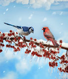 Vogels in de Winter stock illustratie