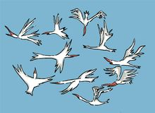Vogels die in de hemel over het overzees vliegen stock illustratie
