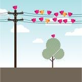 Vogels die en op powerlines zitten zingen Stock Foto