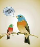 Vogels die op een tak zitten Stock Foto