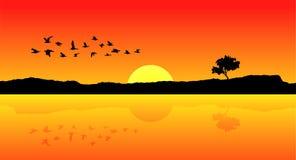Vogels die vector vliegen Stock Foto's