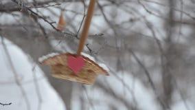 Vogels die zaden van de mand pikken, waar hij rood hart kleefde Bewolking en sneeuwdalingen stock videobeelden