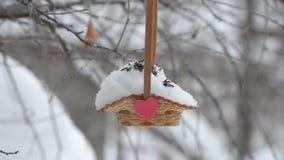 Vogels die zaden van de mand pikken, waar hij rood hart kleefde Bewolking en sneeuwdalingen stock video