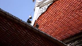 Vogels die zich op de bovenkant van tempeldak bevinden stock footage