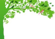 Vogels in een boom royalty-vrije illustratie
