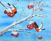 Vogels en Barry Stock Afbeelding