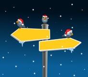 Vogels en Pijlen in de winter Stock Foto's