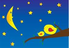 Vogels en sterrige nacht Royalty-vrije Illustratie