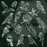 Vogels geplaatst bord stock illustratie