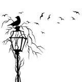 Vogels in het Overdrukplaatje Vectorillustratie van de Straatmuur Stock Foto