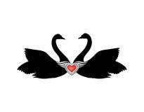 Vogels in liefde met gevleugelde rode hartdecoratie Paar van zwanen Royalty-vrije Stock Afbeeldingen