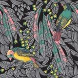Vogels met veren en bloemen. Naadloze Achtergrond. Getrokken hand Stock Foto's