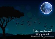 Vogels migrerende dag met boom en gras onder maan op nachtachtergrond Royalty-vrije Stock Afbeelding