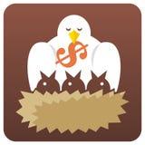 Vogels in nest Stock Afbeeldingen