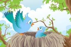 Vogels in nest royalty-vrije illustratie