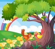 Vogels onder de boom met een regenboog in de hemel Stock Fotografie