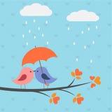 Vogels onder paraplu Royalty-vrije Stock Afbeeldingen