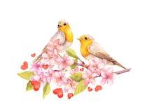Vogels op bloesemtak met bloemen watercolour stock illustratie