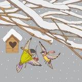 Vogels op de winterachtergronden Royalty-vrije Stock Foto
