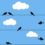 Vogels op draad Royalty-vrije Stock Foto's