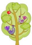 Vogels op een boom Stock Afbeelding