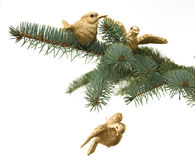 Vogels op pijnboombrunch. De decoratie van Kerstmis Stock Afbeelding