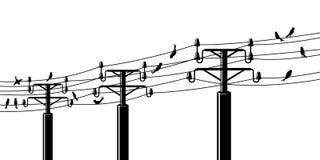 Vogels op powerlines Royalty-vrije Stock Fotografie