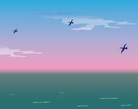 Vogels over het overzees royalty-vrije illustratie