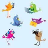 Vogels - reeks 2 royalty-vrije illustratie