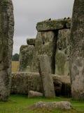 Vogels in Stonehenge Royalty-vrije Stock Foto's