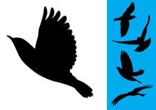 Vogels tijdens de vlucht - Vector royalty-vrije illustratie