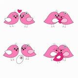 Vogels van de Seth de roze liefde Stock Foto