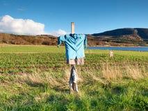 Vogelscheuche gemacht von der alten Kleidung auf einem Gebiet Blaues Hemd und braune Rock Vogelscheuche auf Kreuz Lizenzfreie Stockfotografie