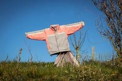 Vogelscheuche im Garten Lizenzfreie Stockfotos