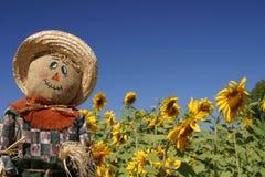 Vogelscheuche im Sonnenblume-Wald Lizenzfreies Stockbild