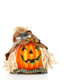 Vogelscheuche-Kürbis-Kopf stockfoto