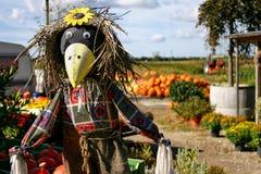 Vogelscheuche mit Kürbisen Lizenzfreies Stockfoto