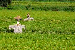 Vogelscheuche und der Bauernhof lizenzfreie stockfotografie