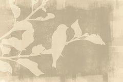Vogelsilhouet op Grunge-Achtergrond stock foto's