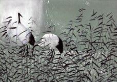 Vogelstörche in den Schilfen stock abbildung