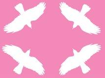 Vogelsymbol-Vektorhintergrund Stockbilder