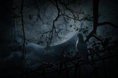 Vogeltribune op oude omheining over dode boom, maan en bewolkte hemel, Mys stock afbeeldingen