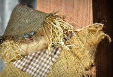 Vogelverschrikker Royalty-vrije Stock Afbeelding