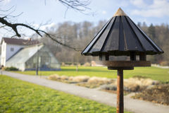 Vogelvoeder stock foto