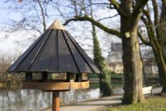 Vogelvoeder op een vijver stock afbeelding