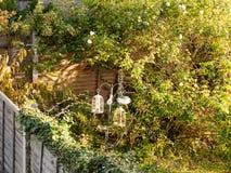 Vogelvoeders in de scènelicht van de achtertuintje leeg zomer buiten bea Royalty-vrije Stock Foto